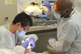 dentist-orthodontist